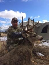 2015 billys mule deer