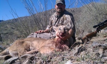 chads lion