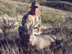 joes coues